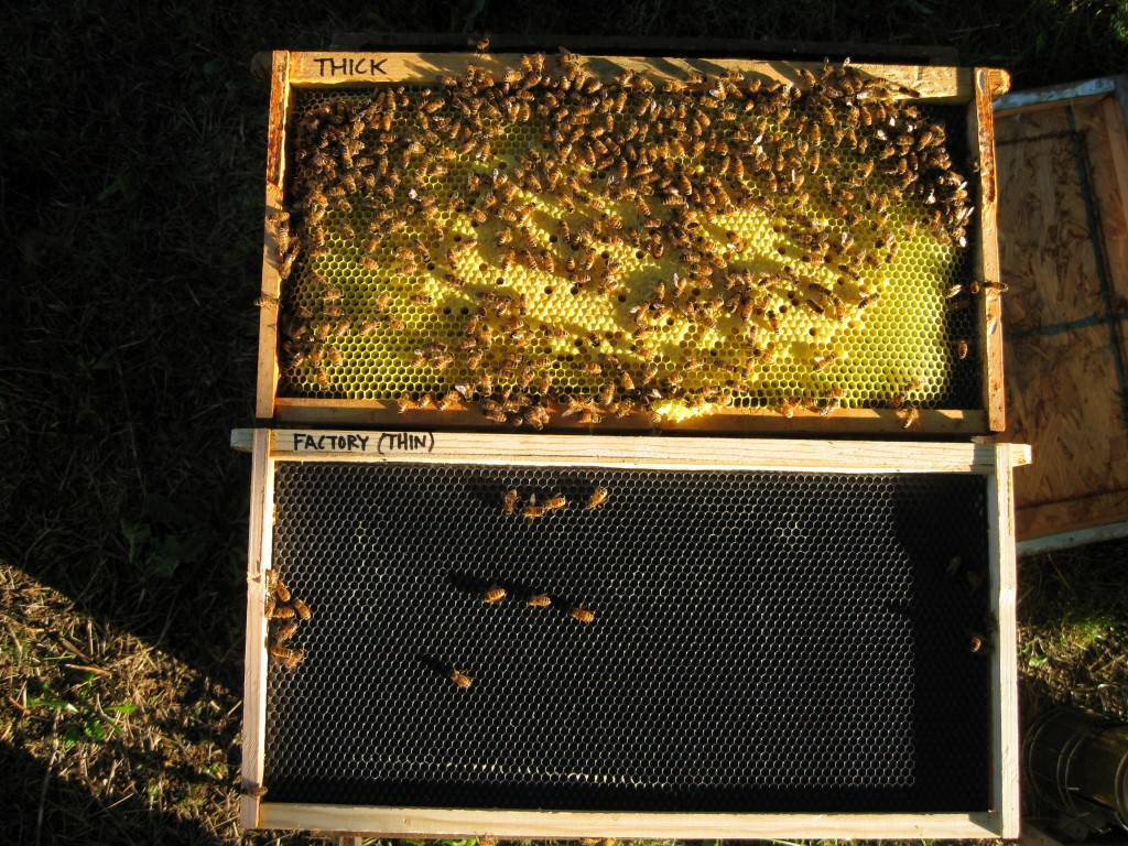 The Beeyard Should You Add Beeswax To Plastic Foundation Beekeeping Wiring Board Warm